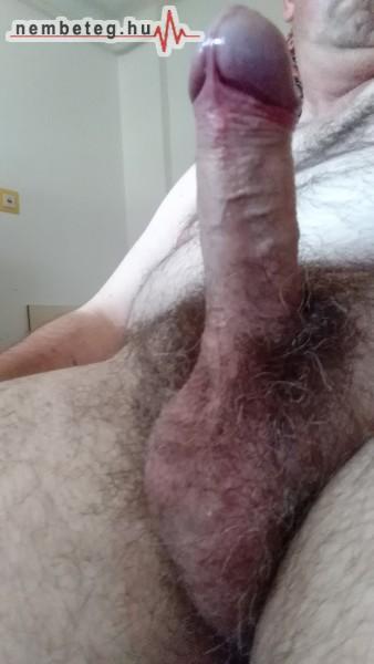 Merev pénisz