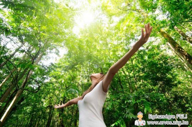 A szervezet feltöltése D-vitaminnal