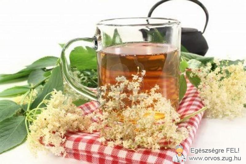 Bodzavirág tea - köhögés ellen