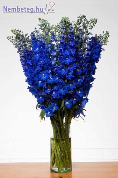 Kék csokor, asztalira