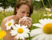 Mi is az a pollenallergia pontosan?!