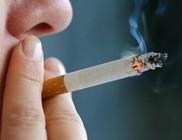A genetika is szerepet játszik a nikotinfüggőség kialakulásában