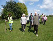Napi 20 perc séta megelőzi a mozgásképtelenség kialakulását